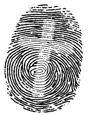 vingerprint